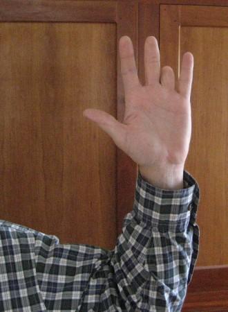 Hand 001
