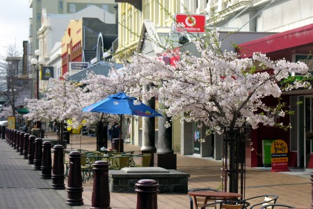 1280px-Spring_in_Esk_Street_-_Invercargill