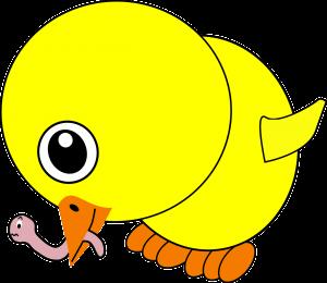 chick-154438_1280